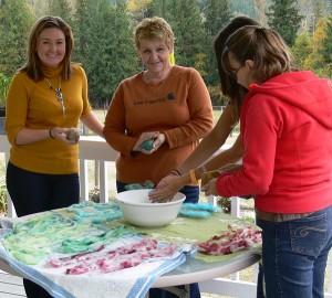 soap felting workshop, fibre dyeing, natural dyes