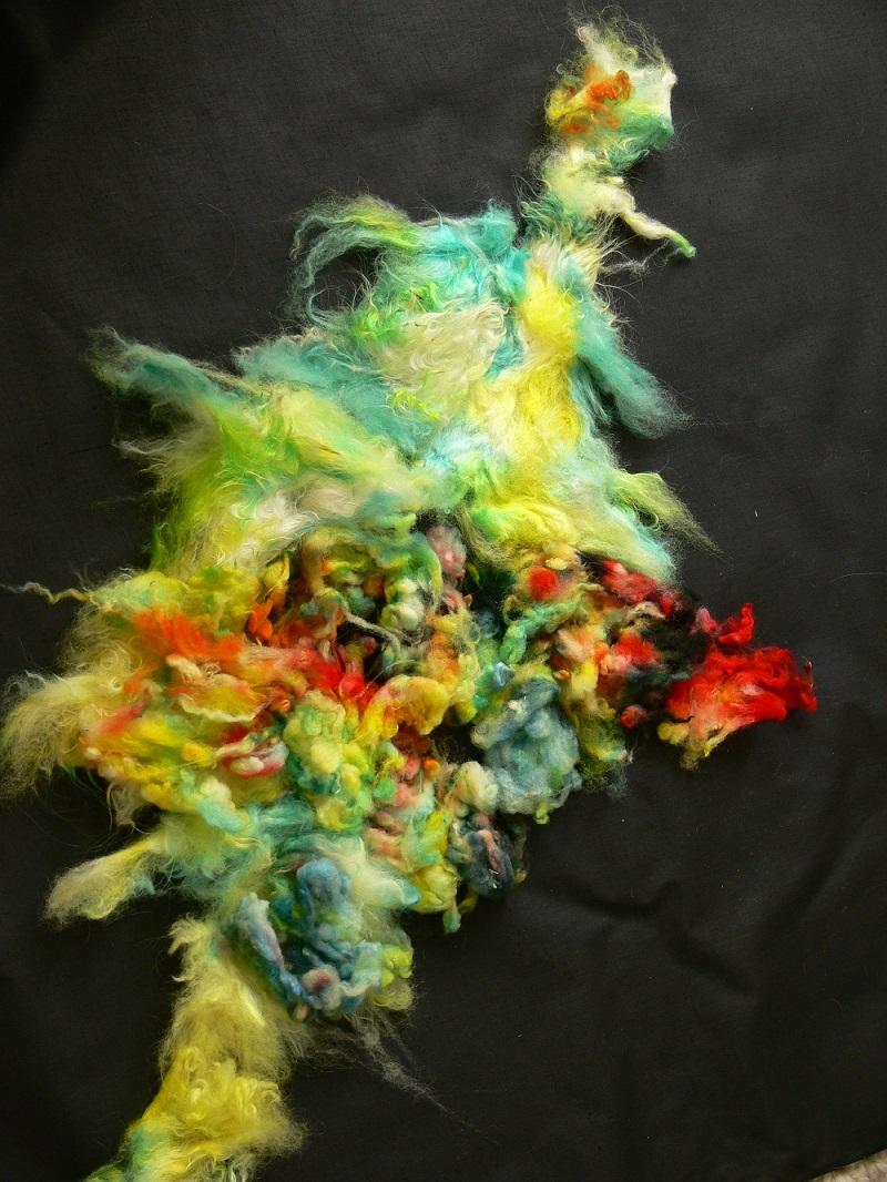 Dyed-in-the-Locks Nebula